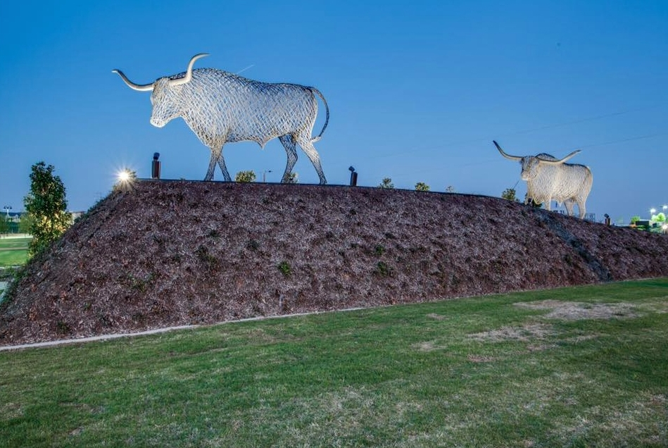 peter-busby-bulls.jpg
