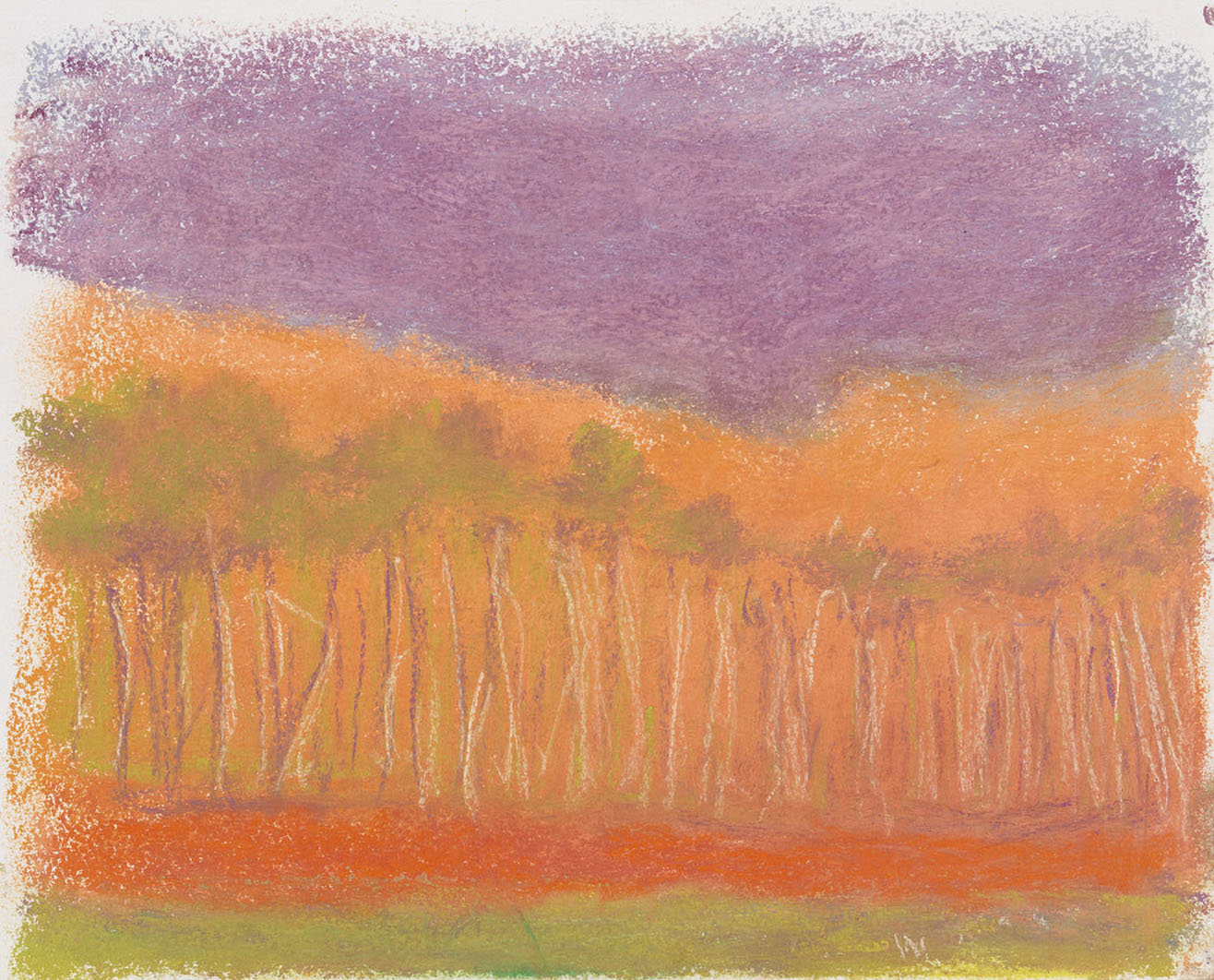 Red Earth , 2015 Pastel on paper 9 x 12 inches