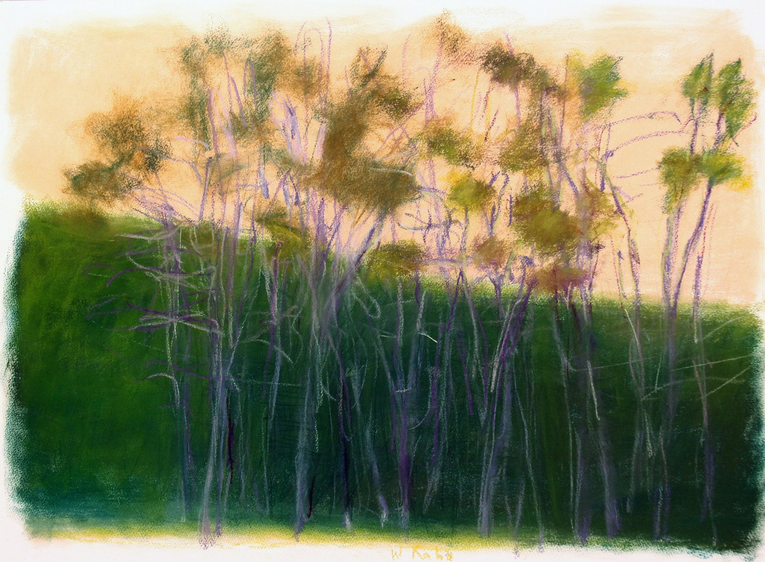 Sky the Color of Peach , 2010 Pastel on paper 22h x 30w inches
