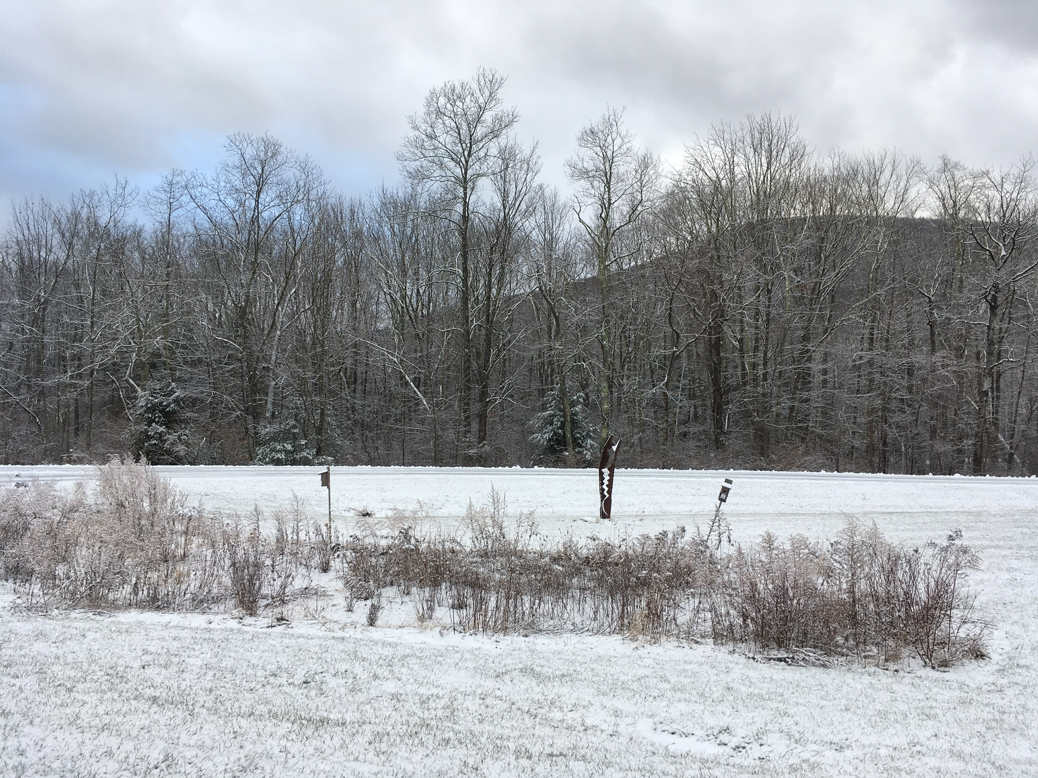 Sunday will be a snowy day across the Park, and Monday for MLK Day will have some of the lowest temperatures the Catskills have seen this winter.