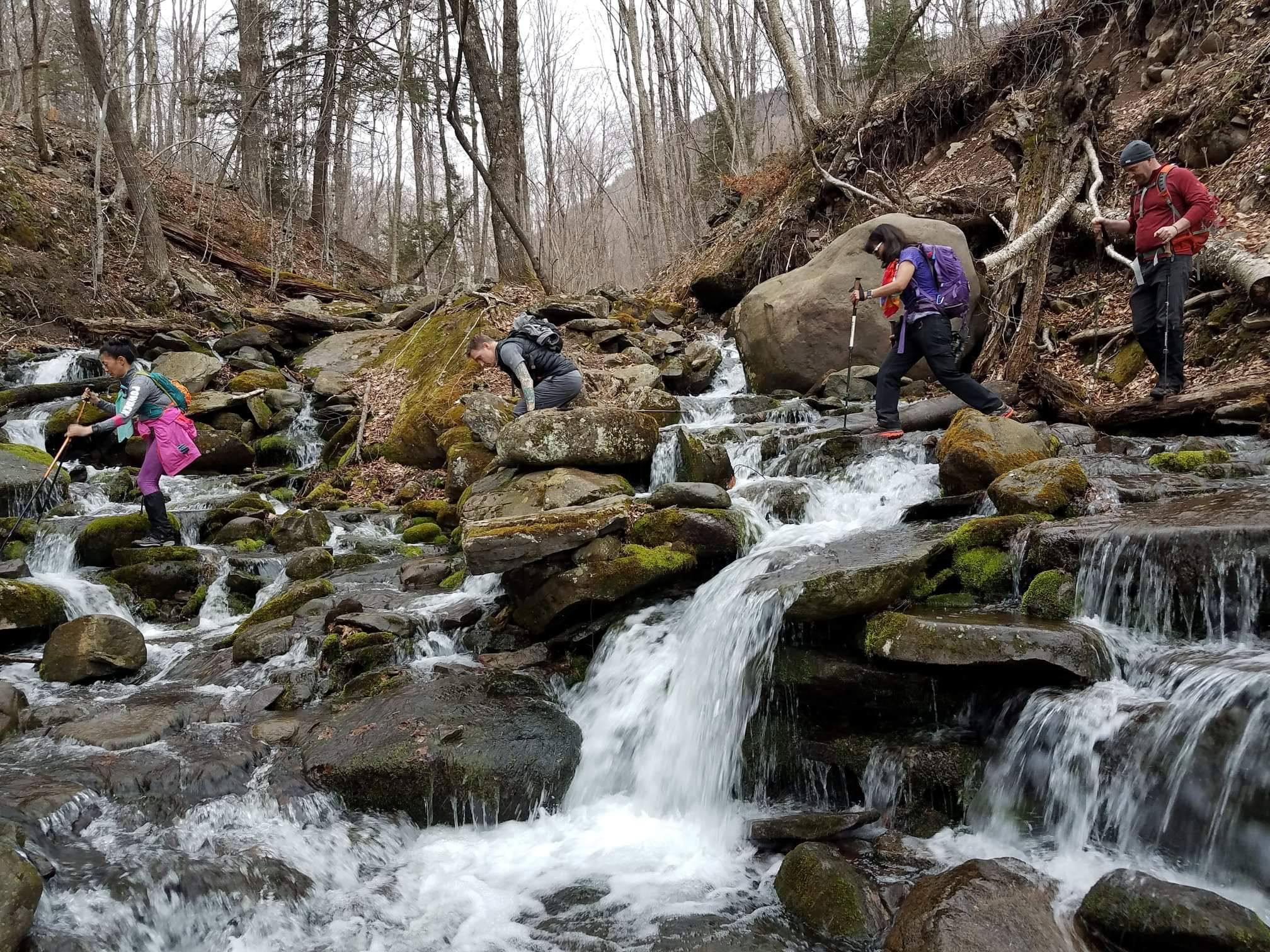Trekking poles can lend extra stability on slippery rocks when stream crossings are necessary.