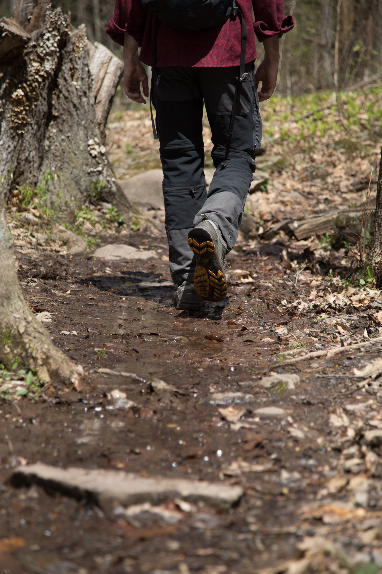Walking through the center of trails whenever possible can make a big difference and lessen our impact over time.