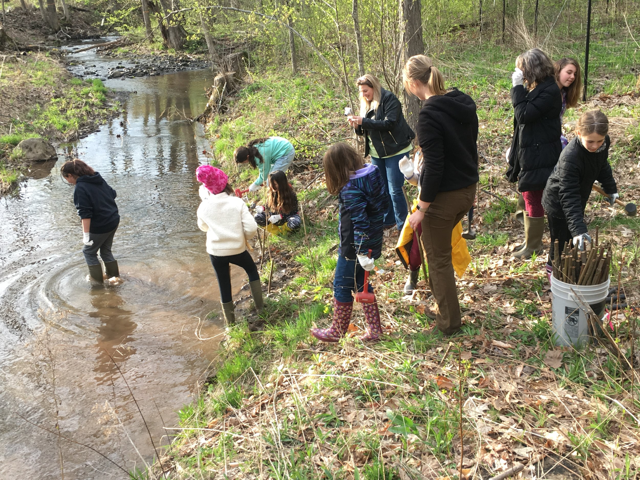 Bring your boots this Saturday to the Catskills Visitor Center to help with light trail maintenance and riparian area stream tree plantings.