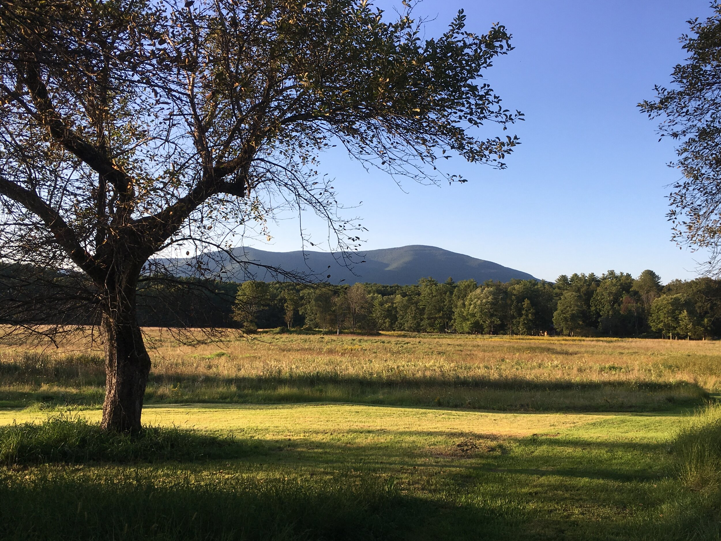 The Thorn Preserve in Woodstock, NY offers great views of Overlook Mountain and some pleasant walking trails.
