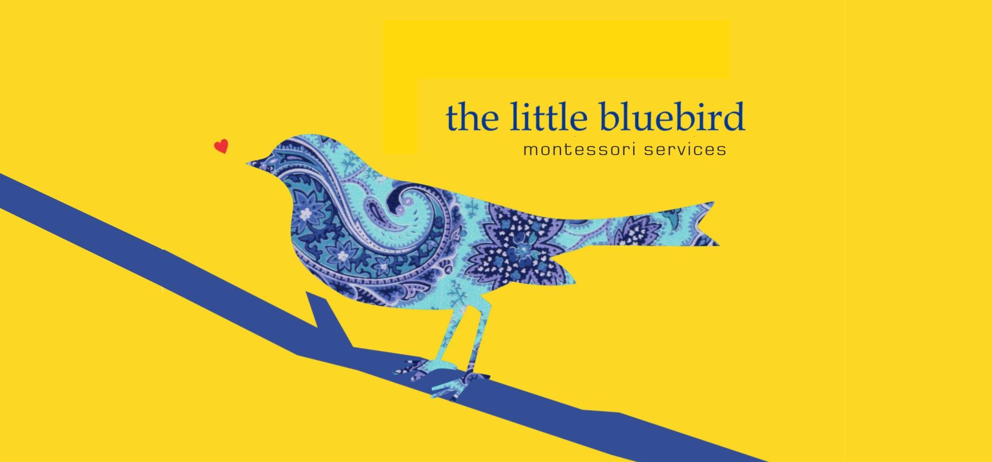 montessori services banner.jpg
