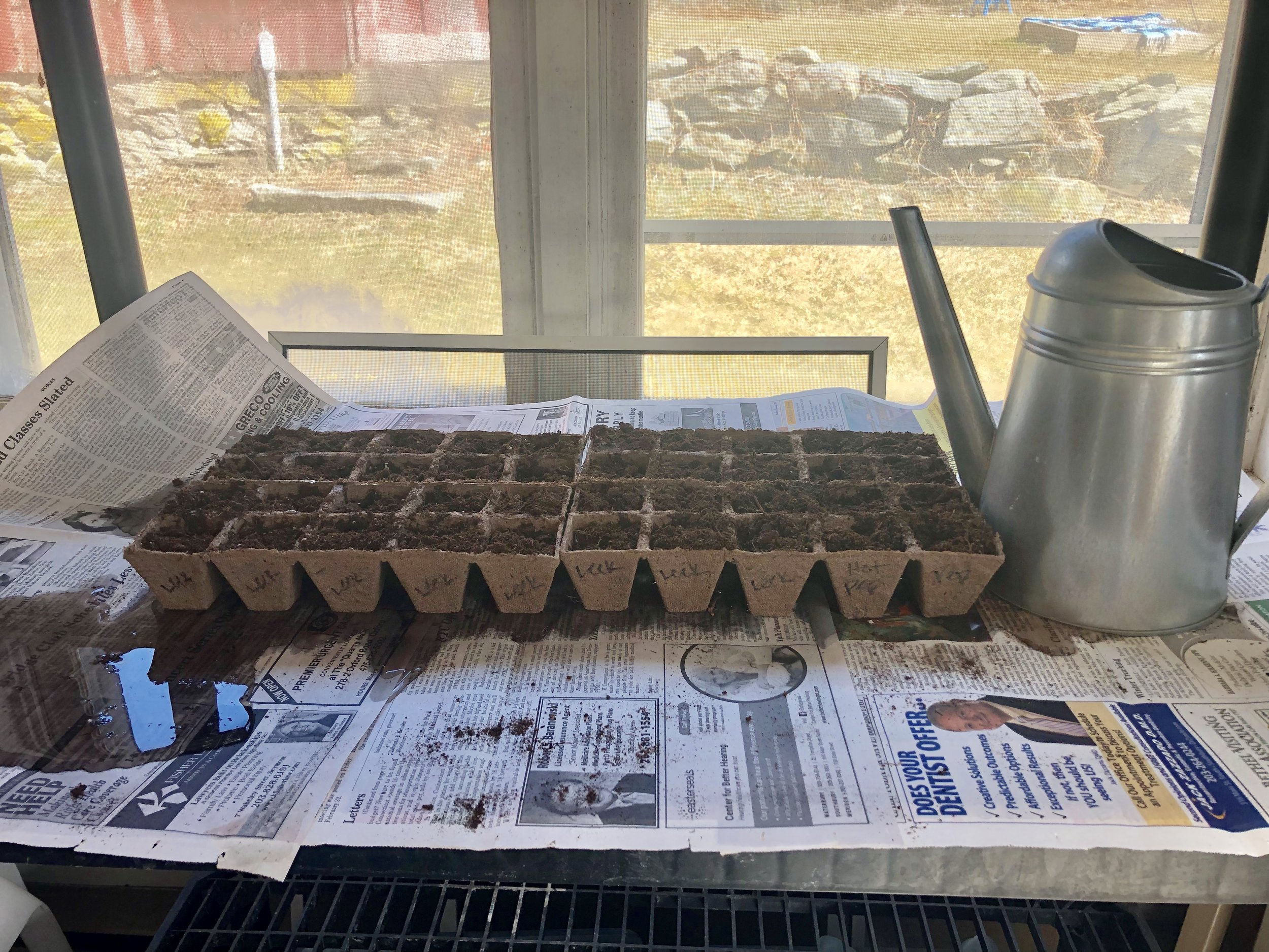 This is just phase 1. At our height, we will have 87 plants started indoors and even more planted directly in the ground outside. I'm so excited.