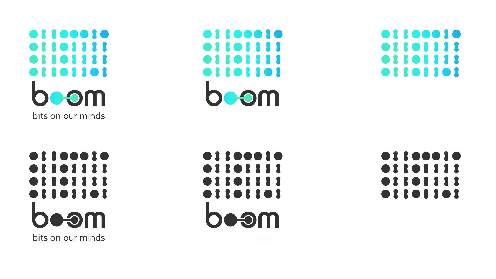 Boom Logos FV-13.jpg