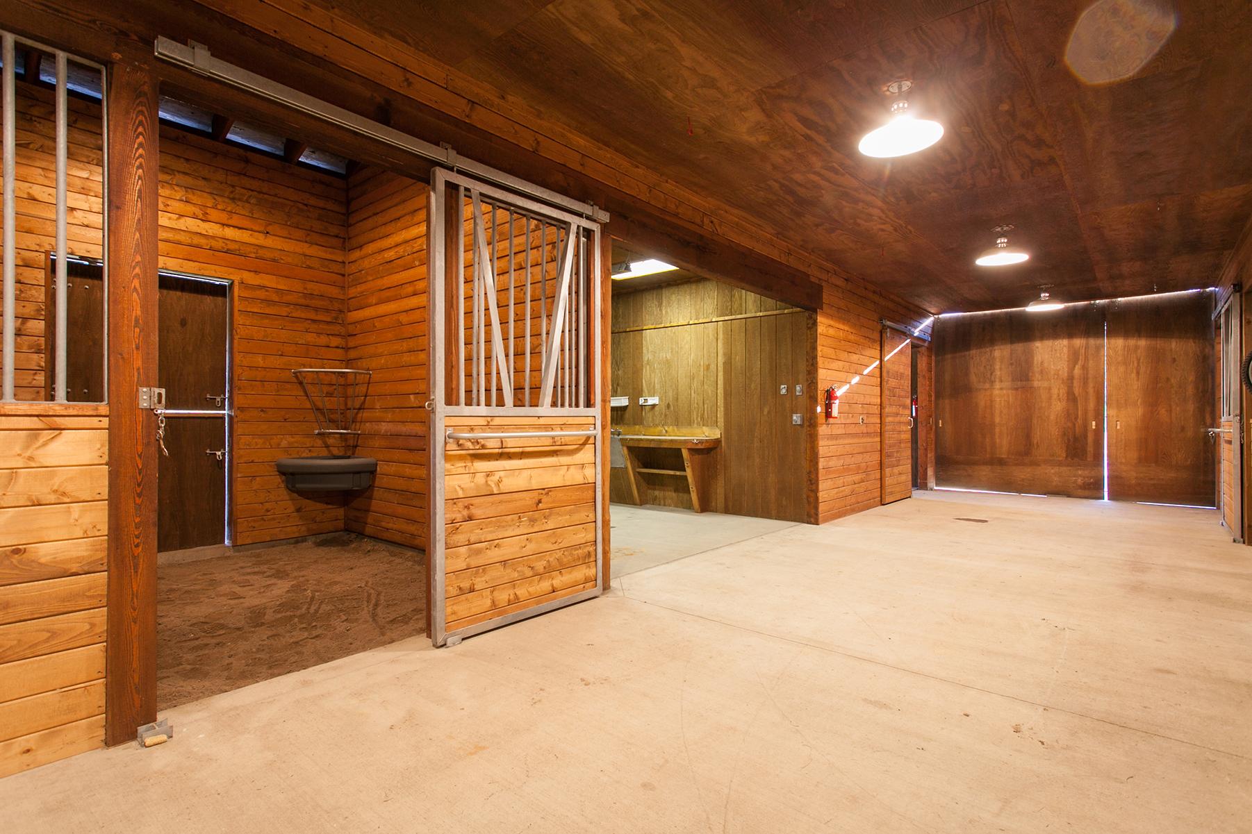 Buck Quarter Ranch-236.jpg