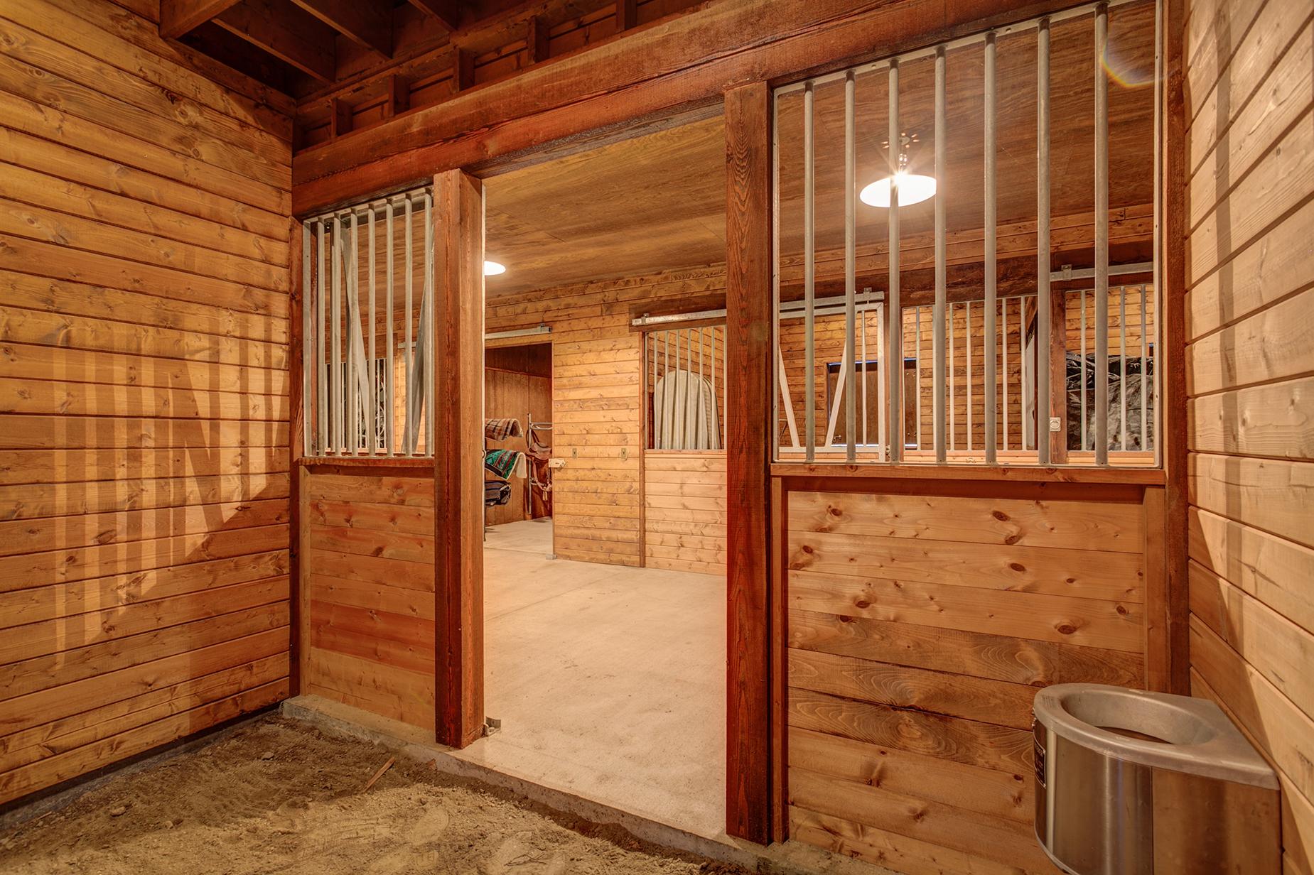 Buck Quarter Ranch-237.jpg