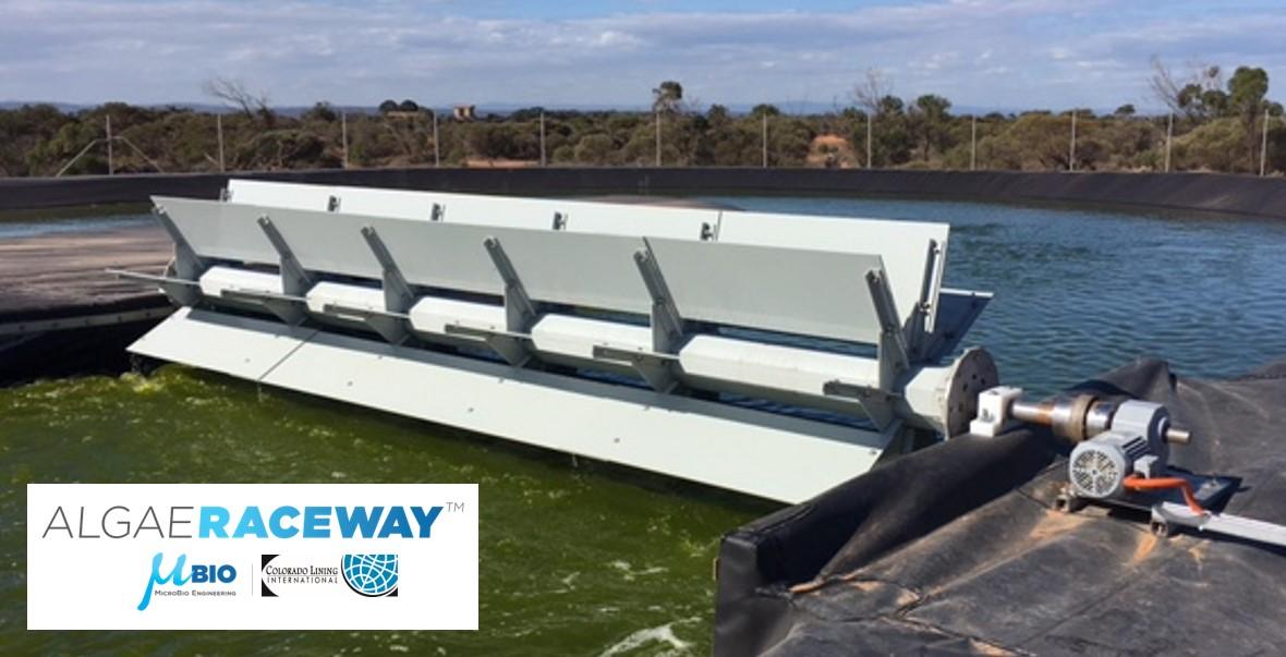 MicroBio Engineering Algae Raceway Paddle wheel