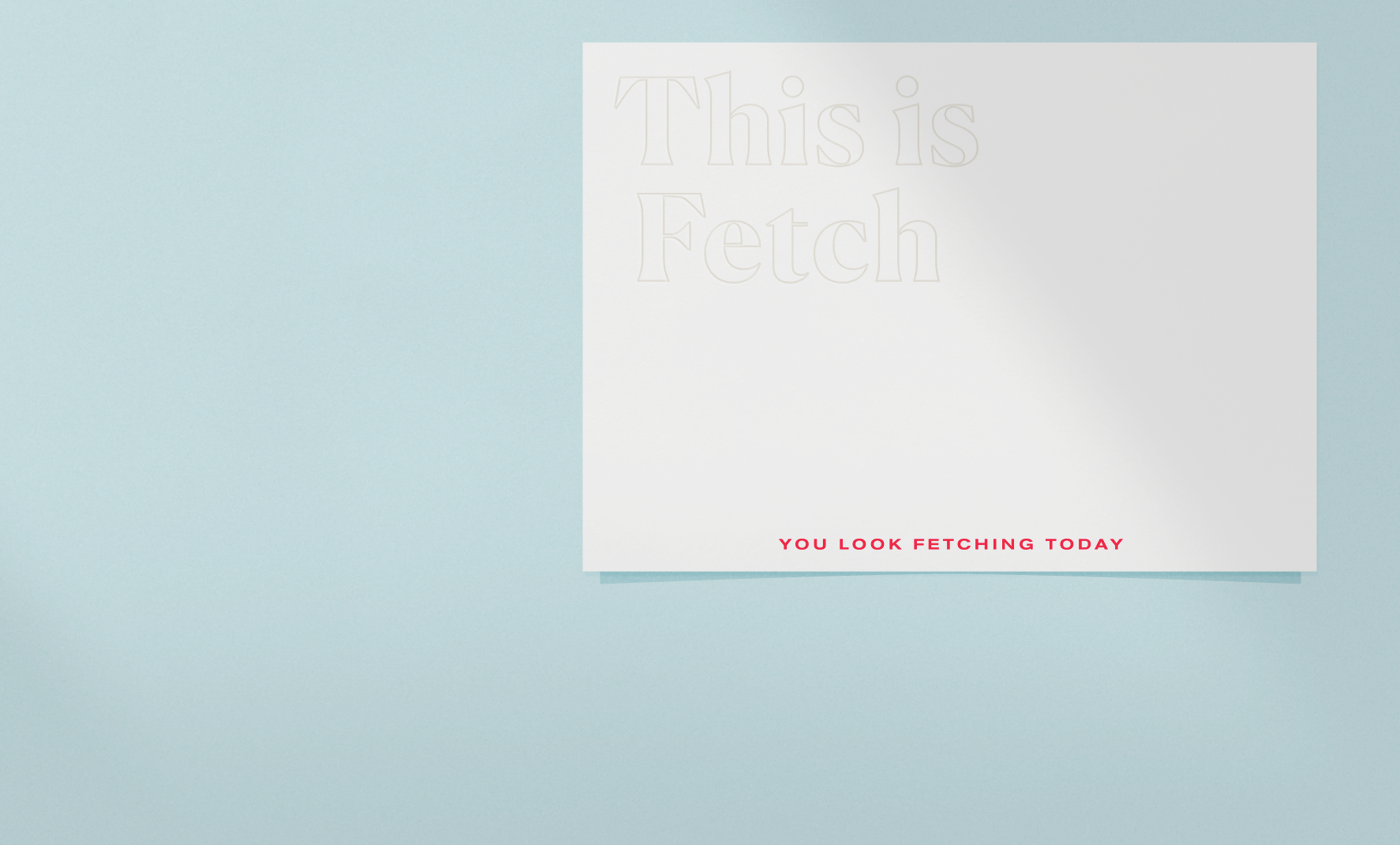 fetch_fetching.png