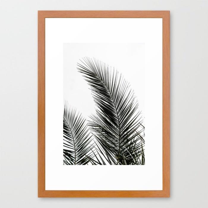 palm-leaves-1-ndg-framed-prints.jpg