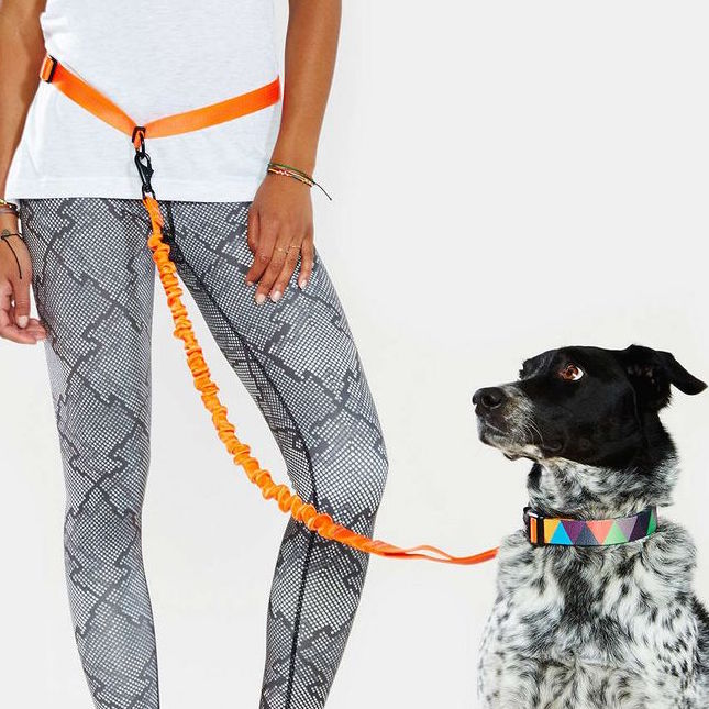Hands-free dog leash from Stunt Puppy