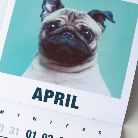 Awesome Calendars Featured on Dog Milk