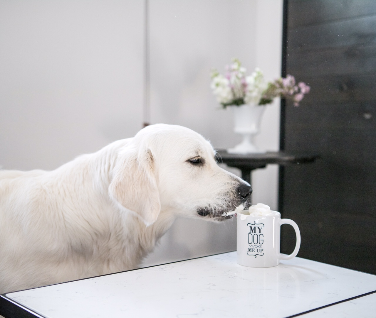 "Barkley & Wagz ""My Dog Woke Me Up"" Mug"