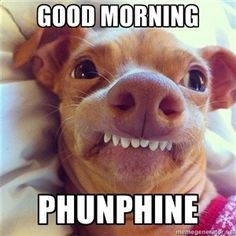 Good Morning Phunphine - Tuna the Dog