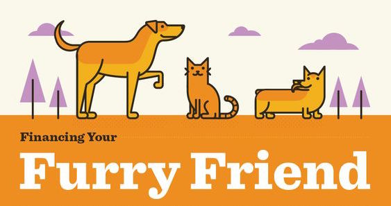Financing Your Furry Friend Infographic