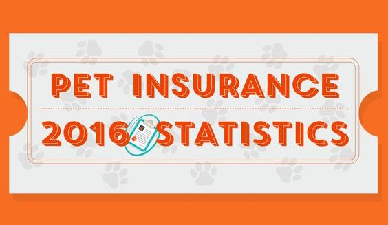 Pet Insurance 2016 Statistics Infographic