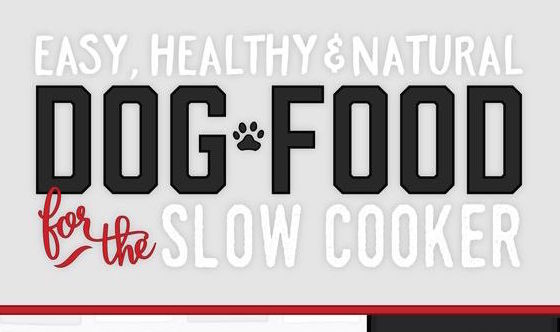 Easy Healthy & Natural Dog Food for the Slow Cooker Infographic