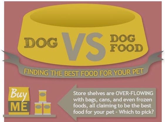 Dog VS Dog Food Infographic