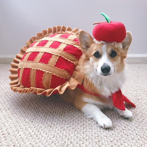 Cherry Pie Dog Costumes