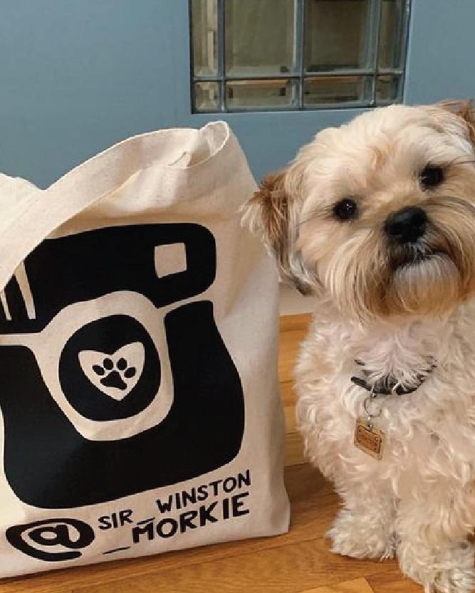 Customized Personalized Custom Instagram Dogstagram Tote By Barkley & Wagz