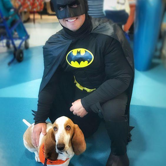 Basset Hound Wearing Orange Barkley & Wagz Halloween Bandana