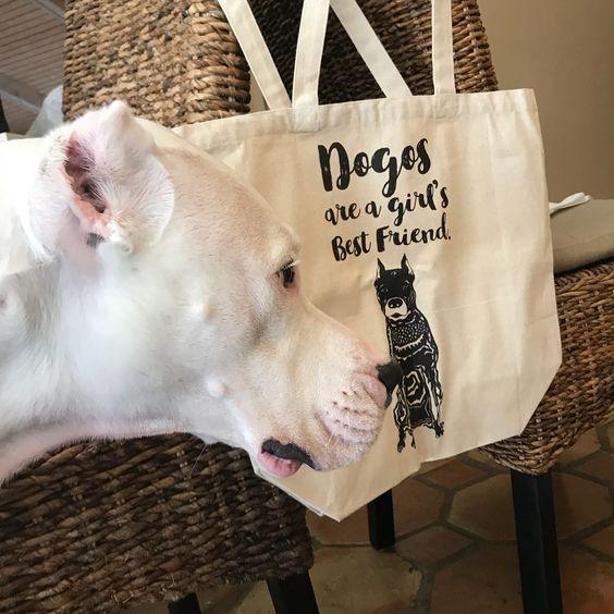 Barkley & Wagz Customized Dogos Are a Girl's Best Friend Dogs are a Girl's Best Friend Tote Bag