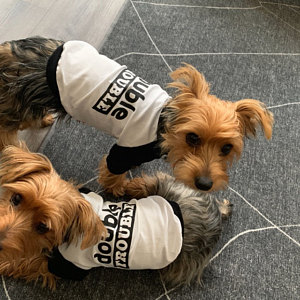 Double Trouble Troublemaker Matching Tees | Brother Sister BFFs Best Friends Dogs Graphic Baseball Raglan Tee Dog Lovers
