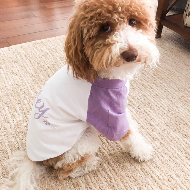 Barkley & Wagz Custom Name Flowers Dog T-Shirt Raglan