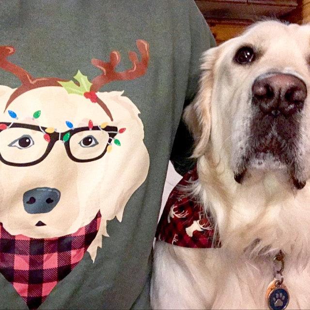 Golden Retriever Reindeer Christmas Sweatshirt | Festive Christmas Holiday Dog Portrait Dog Lover's Crew Neck Long Sleeve Sweater