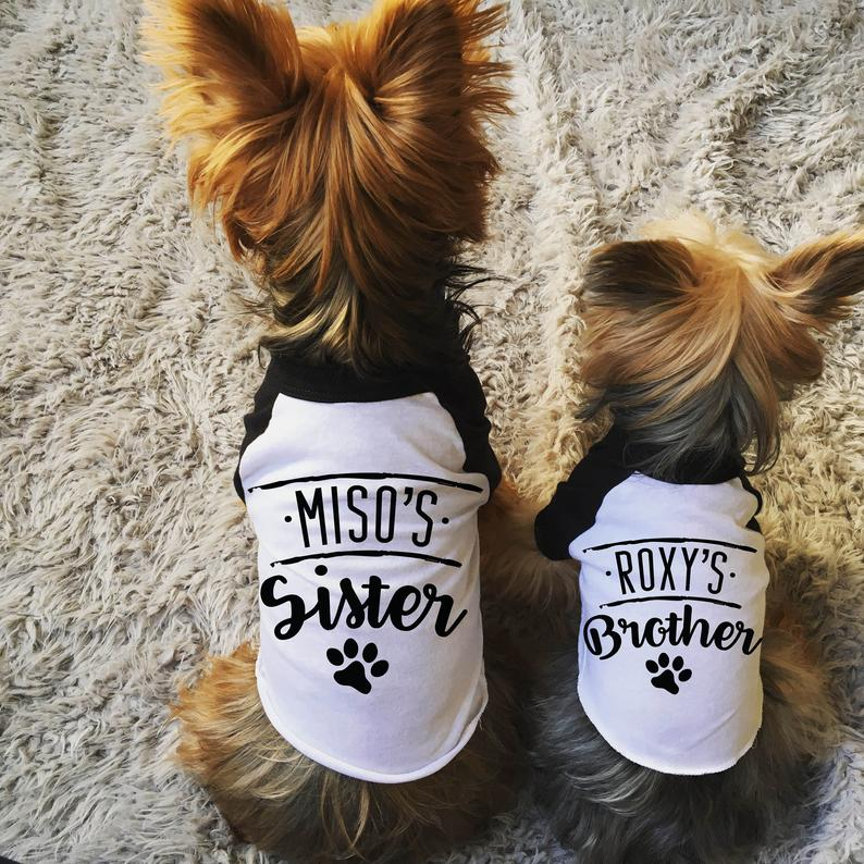 T-Shirt Set For Dogs Worn By Yorkies Crafted By Barkley & Wagz