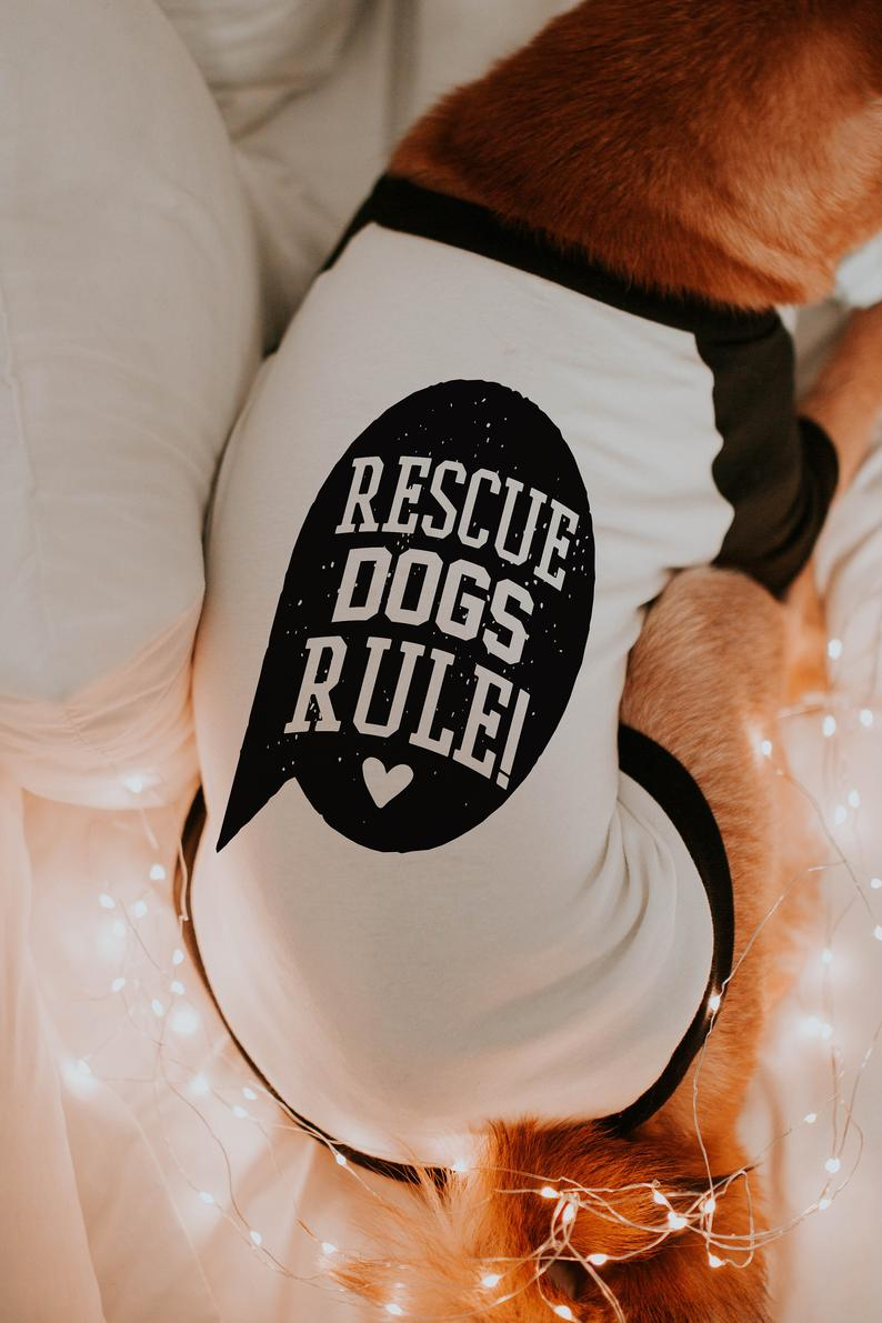 Rescue Dogs Rule Adopt Don't Shop Raglan For Dogs By Barkley & Wagz