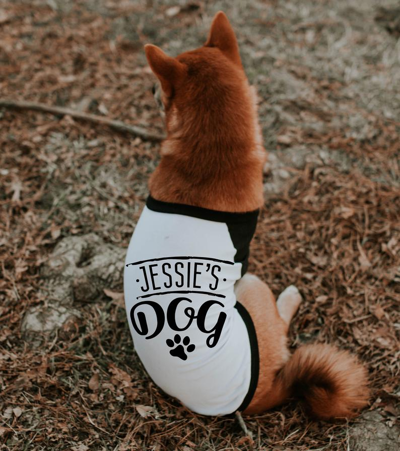 Custom Personalized Name Raglan For Dogs