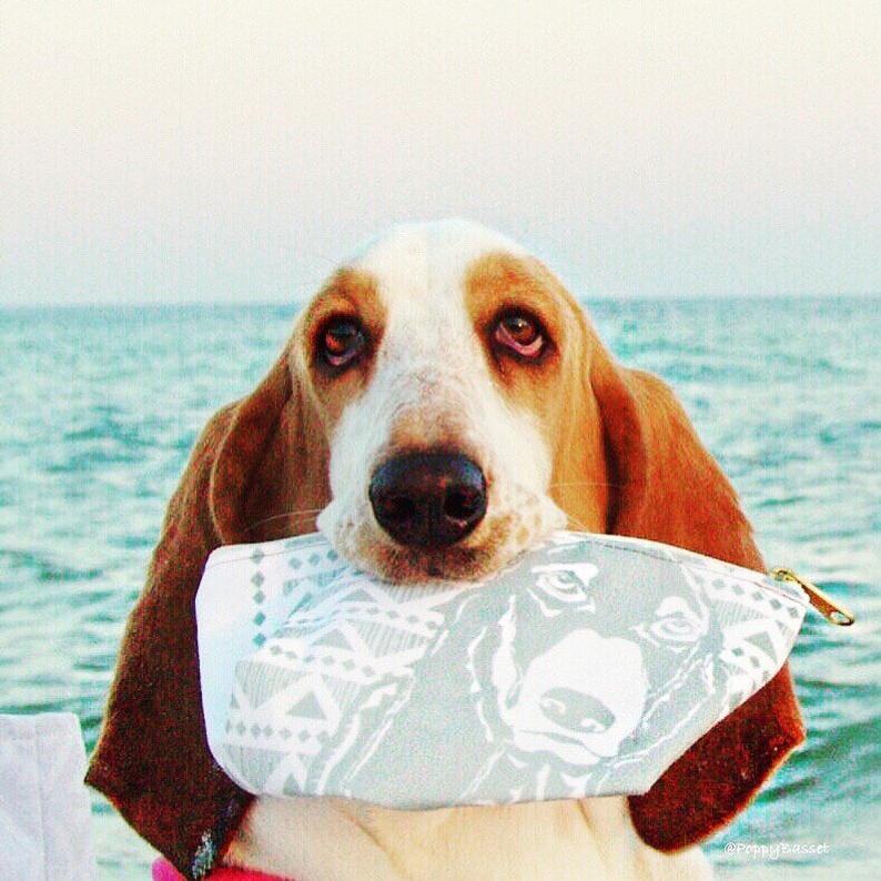 Accessory Bag For Basset Hound Owners By Barkley & Wagz
