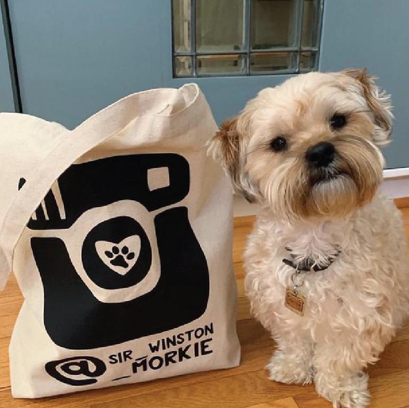 Personalized Instagram Dogstagram Canvas Tote Bag By Barkley & Wagz