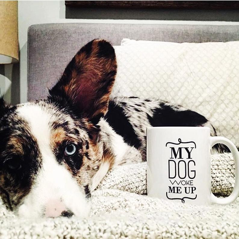 My Dog Woke Me Up Mug By Barkley & Wagz