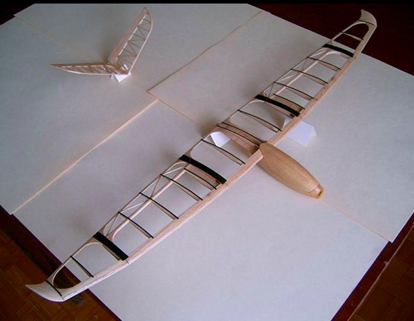 One of Ilia's RC plane design projects.
