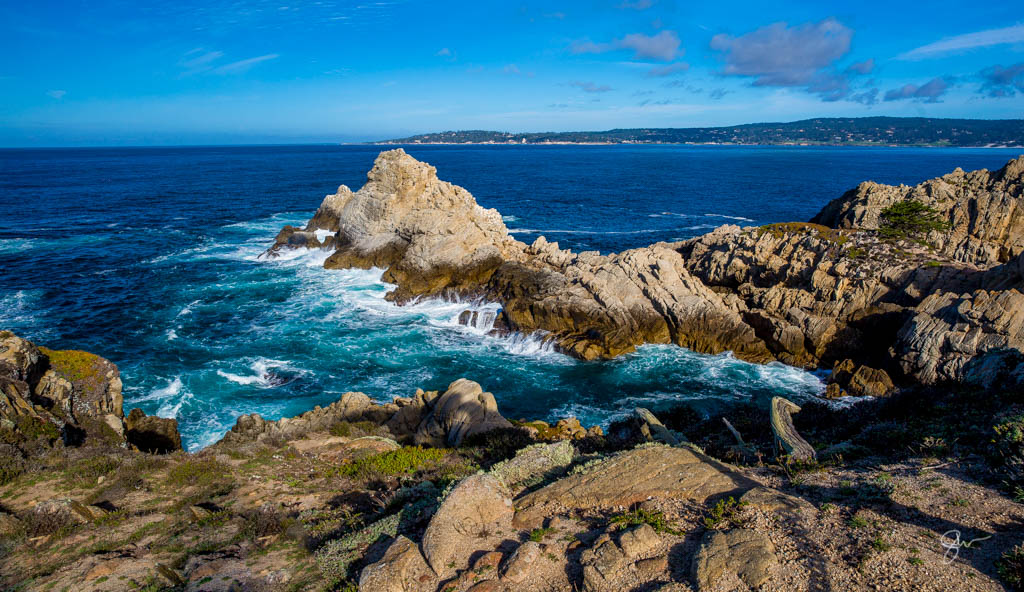 Point Lobos-1.jpg