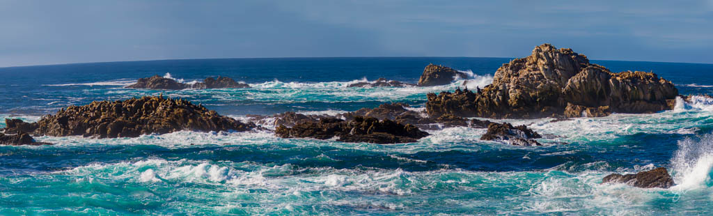 Point Lobos-6.jpg