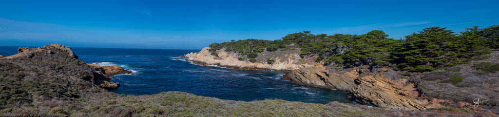 Point Lobos-9.jpg