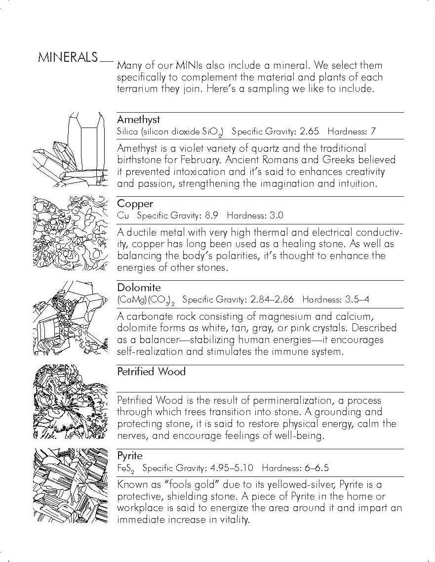 Plant-In City_Brochure-2nd Edition (4)_Page_05.jpg