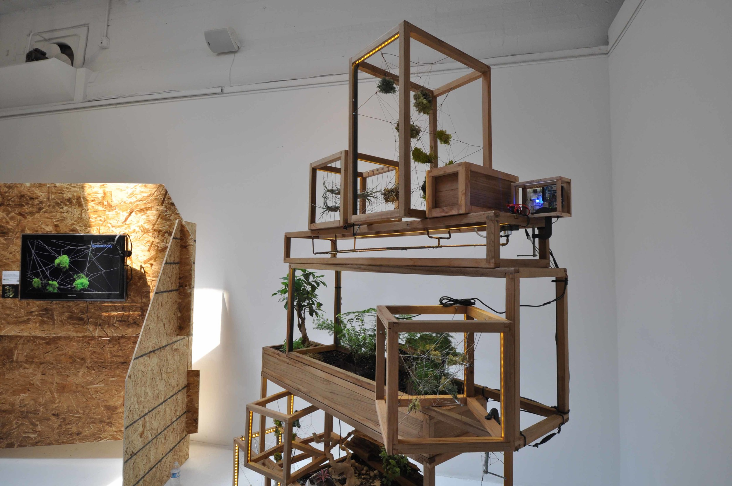 For Human Kind   , Big Think, New York City, June 2012 - (  Plant-In City/Joint Exhibition)