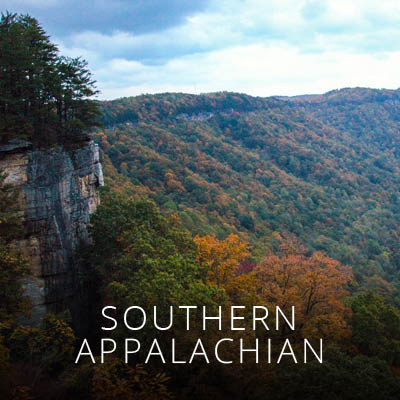 Chapters: Asheville, Columbia, Charleston, Triangle, Charlotte, Triad