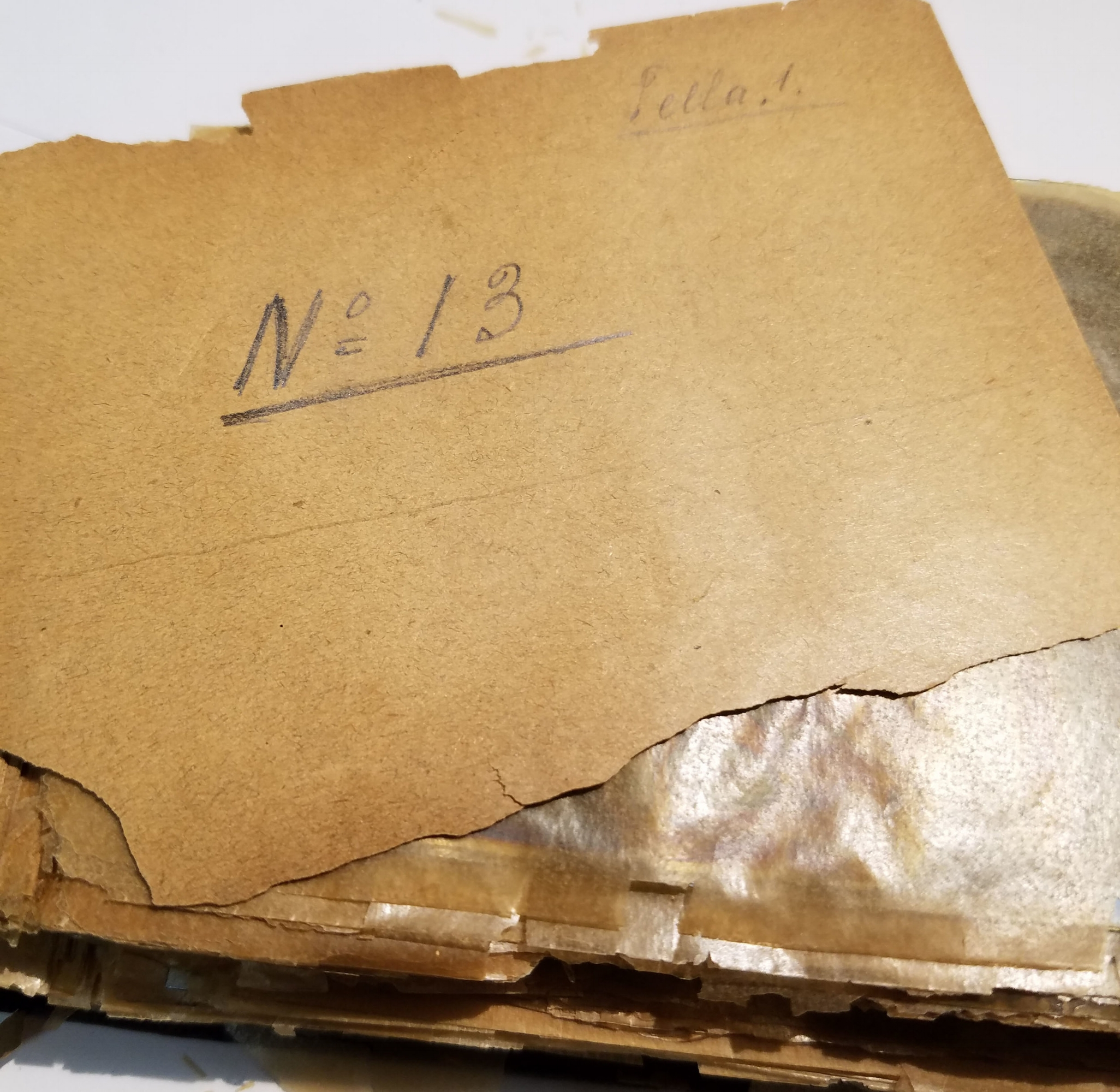 An album of nitrate negatives circa 1900