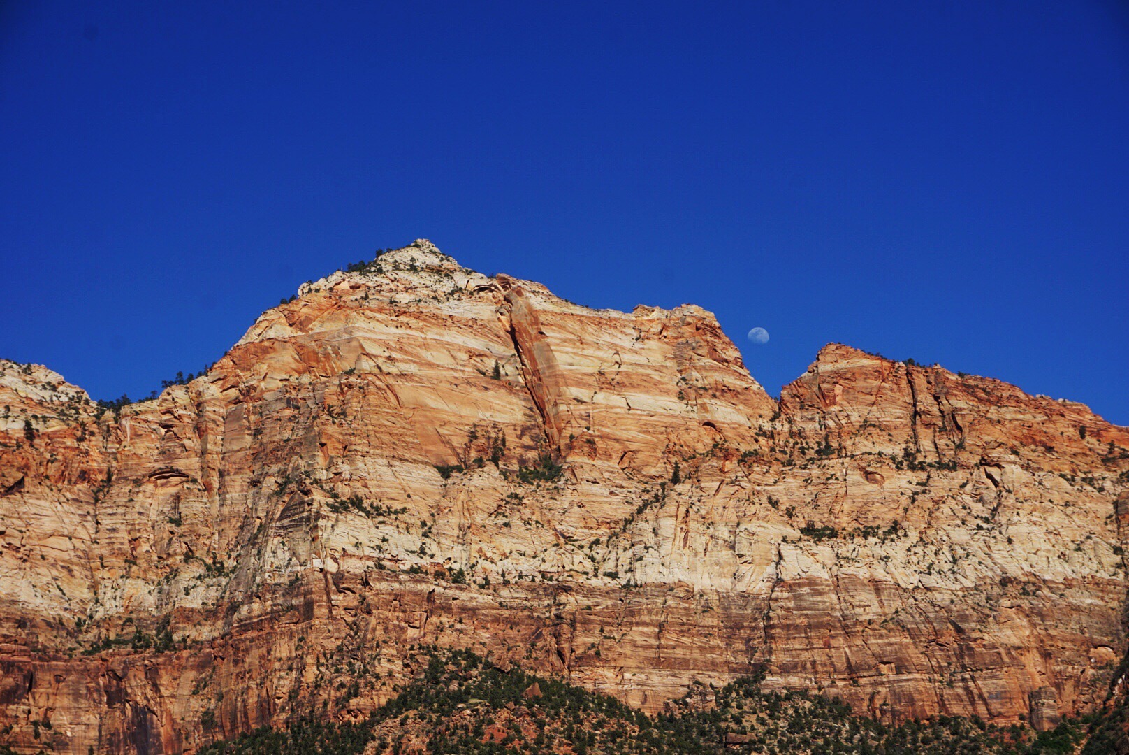 Moon Rising over Zion National Park, UT. Photo Credit: Taylor Luneau.