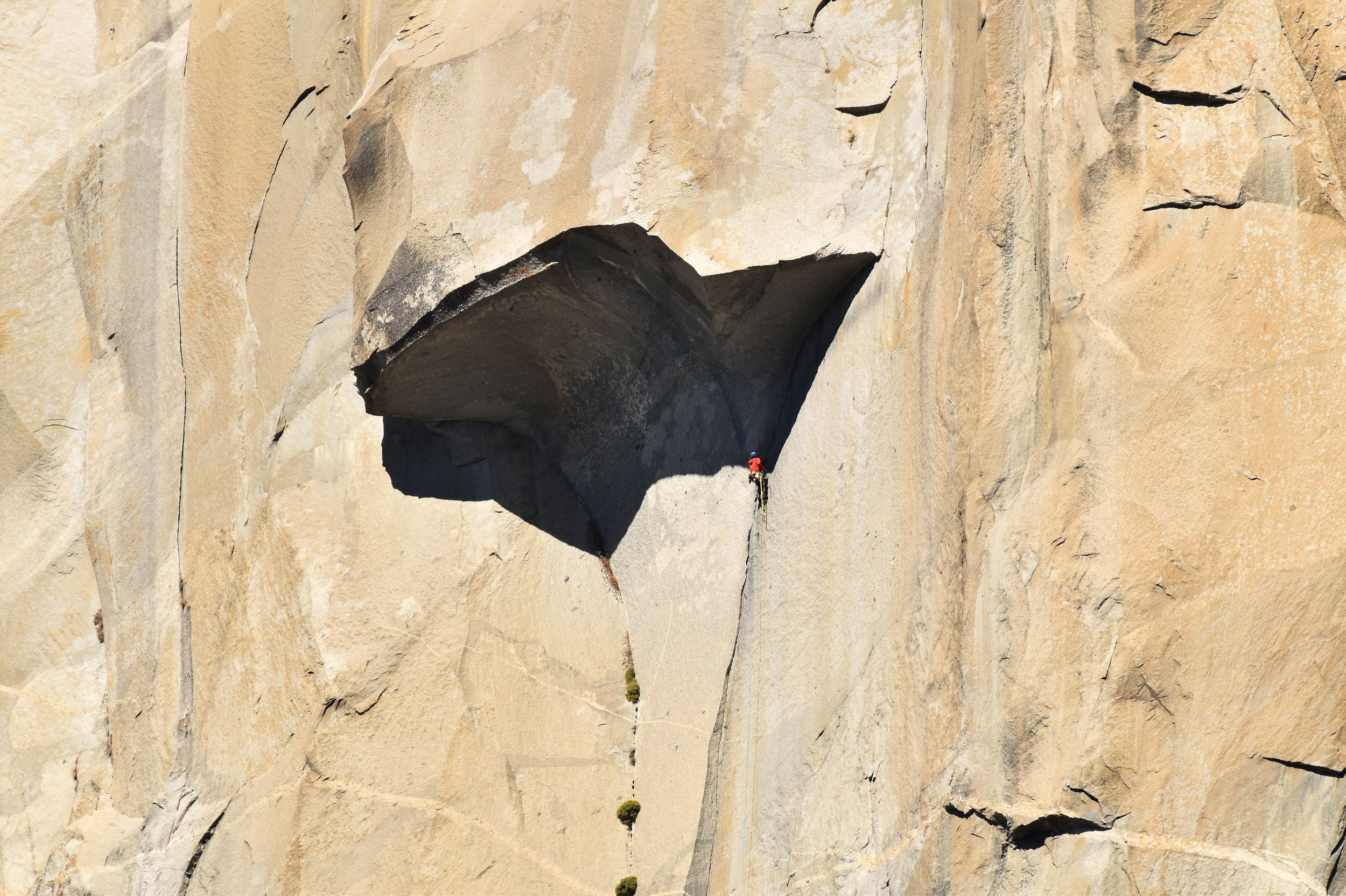 Mike and Zach climbing the Great Roof on the Nose of El Capitan. The next pitch, Pancake Flake, is just above the right side of the roof. Photo by Tom Evans / El Cap Report.