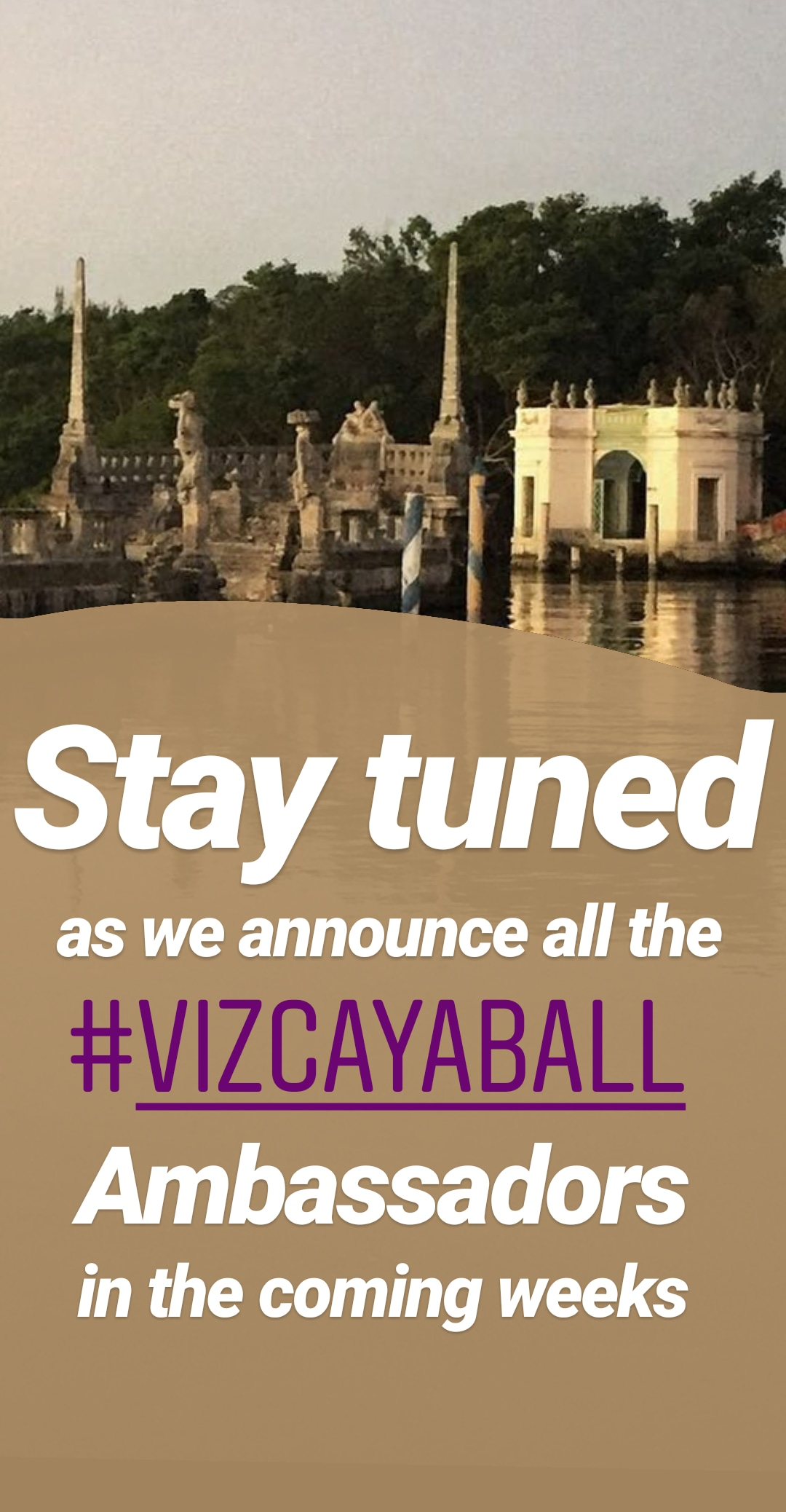 VizcayaBall - InstaStories Kit 1 - 5.jpg