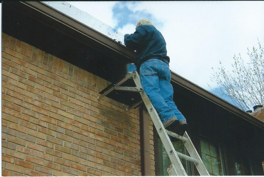 LKS Cleaning Gutters.jpg