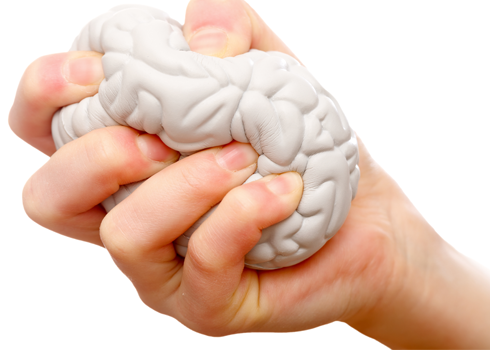 A person is squeezing a stress ball. The stress ball looks like and is in the shape of a brain.